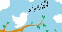 TwitterFeature
