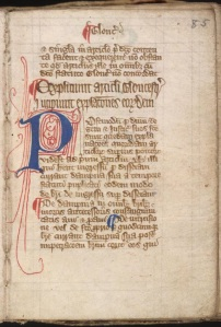 Magna Carta page